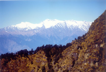 Garhwal Himalayas from Chopta ( 2700 meters) in Uttaranchal.